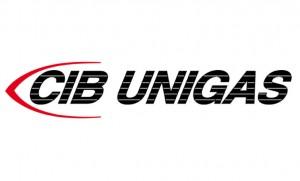 Запчасти к горелкам CIB UNIGAS фото